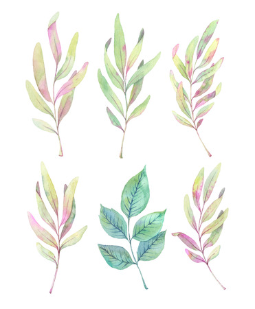 leaf logo: Hand drawn watercolor illustrations. Spring leaves and branches. Floral Design elements. Perfect for wedding invitations, greeting cards, blogs, posters and more Stock Photo