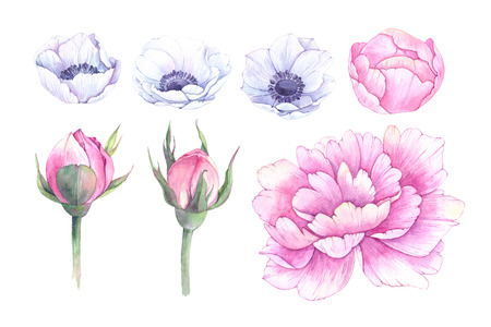 Hand drawn watercolor illustrations. Spring leaves, anemones and peonies. Save the date. Perfect for wedding invitations, greeting cards, blogs, posters and more Archivio Fotografico