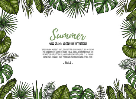 Summer tropical postcard template. Frame with palm leaves (monstera, areca palm, fan palm, banana leaves). Hand drawn vector illustration. Perfect for prints, posters, invitations, textile, packing etc