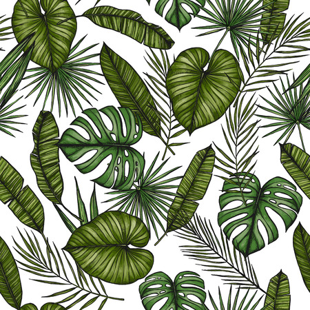 Tropical seamless pattern. Background with palm leaves (monstera, areca palm, fan palm, banana leaves). Hand drawn vector illustration. Perfect for prints, posters, invitations, textile, packing etc