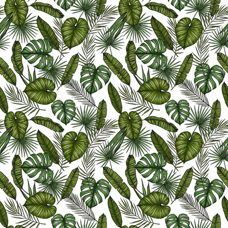 areca: Tropical seamless pattern. Background with palm leaves (monstera, areca palm, fan palm, banana leaves). Hand drawn colorful illustration. Perfect for prints, posters, invitations, textile, packing etc Stock Photo