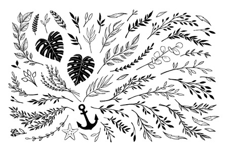 sketched arrows: Hand sketched vector vintage elements ( laurels, frames, leaves, flowers, swirls, branches). Wild and free. Summer collection. Perfect for invitations, greeting cards, posters, prints etc
