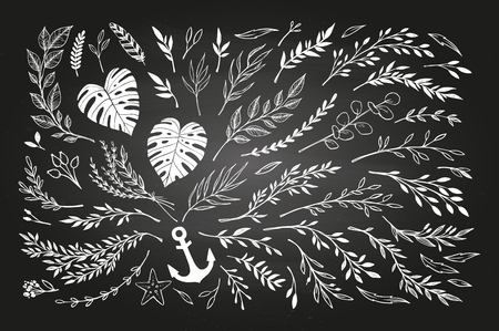 sketched arrows: Hand sketched vector vintage elements ( laurels, leaves, flowers, swirls, branches). Chalkboard background. Summer collection. Perfect for invitations, greeting cards, posters, prints etc