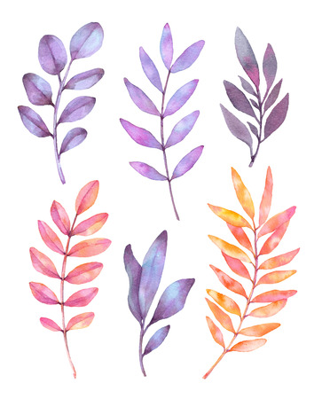 Hand drawn watercolor illustrations. Botanical clipart. Set of purple leaves, herbs and branches. Floral Design elements. Perfect for wedding invitations, greeting cards, blogs, posters and more