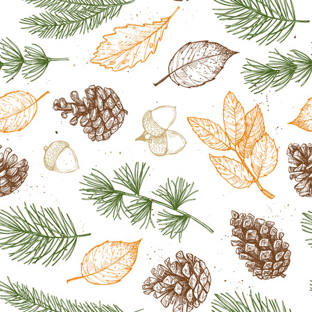 Seamless pattern. Hand drawn vector illustrations - Forest Autumn collection. Spruce branches, acorns, pine cones, fall leaves. Design elements for invitations, greeting cards, quotes, blogs, posters, prints