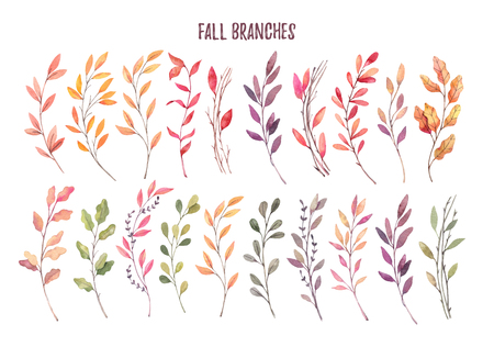 Hand drawn watercolor illustrations. Autumn Botanical clipart. Set of fall leaves, herbs and branches. Floral Design elements. Perfect for invitations, greeting cards, blogs, posters, prints Imagens - 90746653