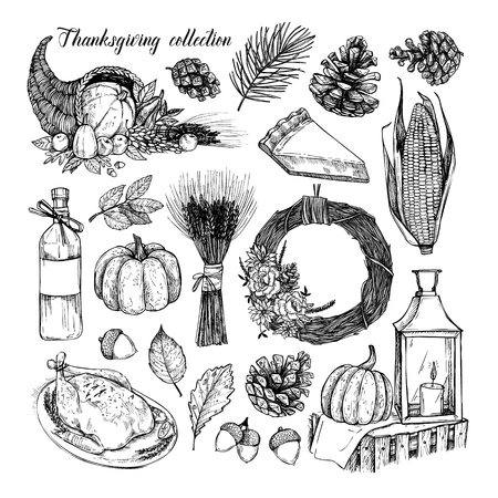 Hand sketched thanks giving item illustration. Çizim