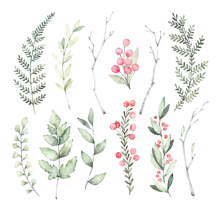 Hand drawn watercolor illustrations. Botanical clipart. Set of Green leaves, ferns, herbs and branches. Floral Design elements. Perfect for wedding invitations, greeting cards, blogs, posters and more Imagens