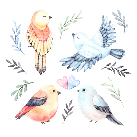 Watercolor illustrations. Four cute birds with green branches and leaves. Spring mood. Floral Design elements. Perfect for invitations, postcards, prints and posters
