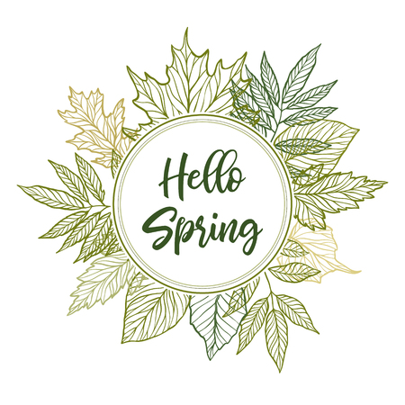 Hand drawn vector illustration spring label with green leaves, herbs and branches. Floral design elements perfect for wedding invitations, greeting cards, blogs, posters and more.