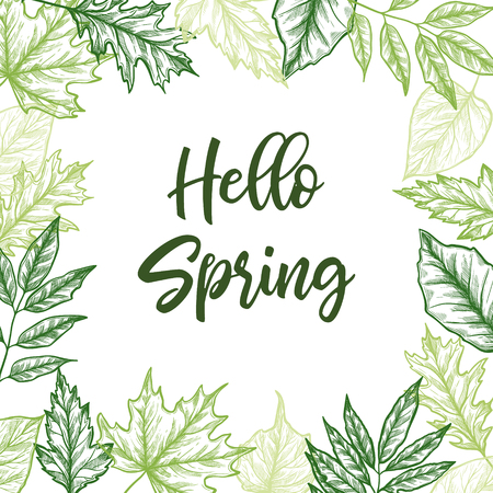 Hand drawn vector illustration spring frame with green leaves, herbs and branches. Floral design elements, perfect for wedding invitations, greeting cards, blogs, posters and more.