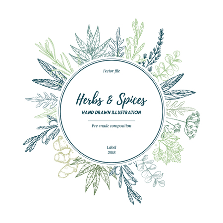 Hand drawn vector illustration. Label with herbs and spices (sage, tarragon, ginger). Herbal pre-made composition. Perfect for menu, cards, prints, packing, leaflets