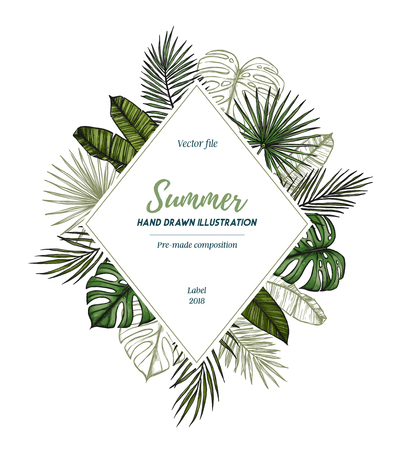Summer tropical exotic template. Label with Palm leaves (monstera, areca, fan, banana). Hand drawn vector illustration. Perfect for prints, posters, invitations, packing etc Ilustrace