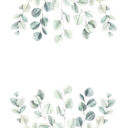 Watercolor botanical illustration. Branches and leaves of green eucalyptus. Botanical design elements. Perfect for wedding invitations, cards, frames, posters, packing. Archivio Fotografico - 125576029