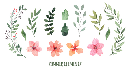 Watercolor illustration. Summer foliage. Botanical collection of green leaves, branches, flowers and herbs. Perfect for wedding invitations, greeting cards, posters, prints, packing Banco de Imagens