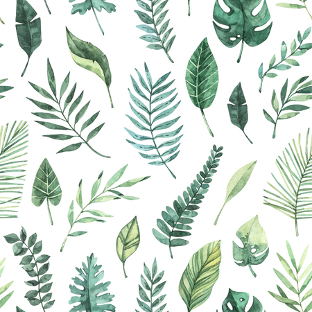 Watercolor seamless pattern. Summer tropical background. Tropical palm leaves (monstera, areca, fan, banana). Perfect for invitations, prints, packing, fabric, textile, wrapping paper Archivio Fotografico - 124958810
