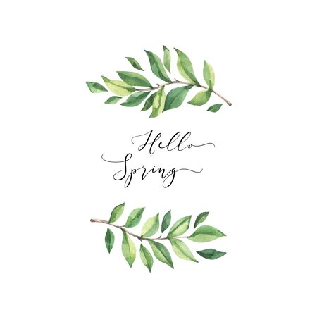 Hand drawn watercolor illustration. Composition with botanical spring leaves. Greenery. Floral Design elements. Perfect for wedding invitations, cards, prints, posters