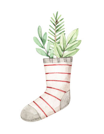 Christmas card with holiday socks, fir branch, mistletoe and eucalyptus  - Watercolor illustration. Happy new year. Winter design elements. Perfect for cards, invitations, banners, posters Banco de Imagens
