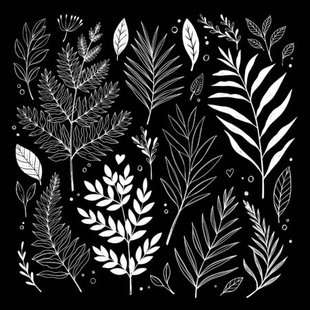 Hand sketched vector vintage elements ( herbs, leaves, flowers, branches). Wild and free. Botanical illustrations. Perfect for invitations, greeting cards, quotes, blogs, Wedding Frames, posters