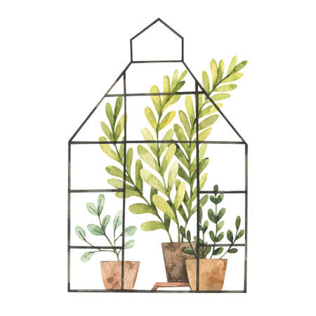 Hand drawn watercolor illustration - Greenhouse with plants, greenery, leaves and pots. Grow and plant. Eco, Farm, Nature. Perfect for prints, posters, cards.