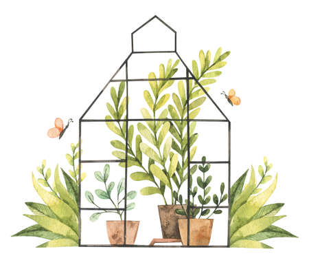 Hand drawn watercolor illustration - Greenhouse with plants, greenery, leaves, pots, tools, butterfly. Grow and plant. Eco, Farm, Nature. Perfect for prints, posters, cards