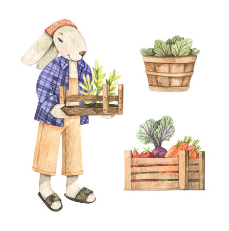 Watercolor cute bunny gardener with wooden box and vegetables. Spring Summer. Harvest. Baby character. Children room decor. Perfect for invitations, greeting cards, packing, Baby shower