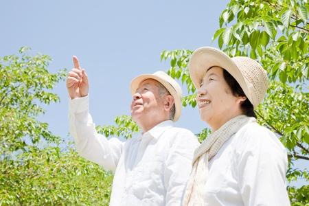 Asian male model: Chỉ vào một cặp vợ chồng già Kho ảnh