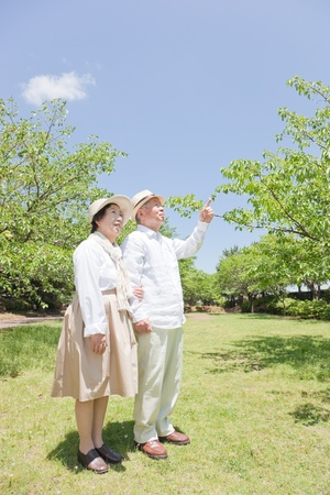 Pointing to an elderly couple Stock Photo - 11700345