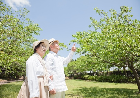 japan sky: Pointing to an elderly couple