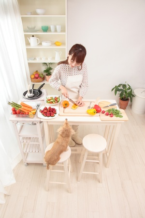 koreans: Beautiful Asian women, is being prepared for cooking in the kitchen along with the dog.