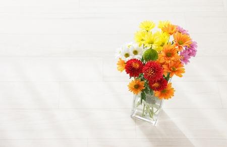 コピーのためのスペースとカラフルな菊