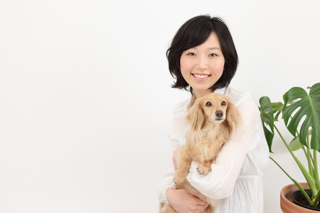 dogs play: Beautiful young japanese women with dachshund in the room Stock Photo