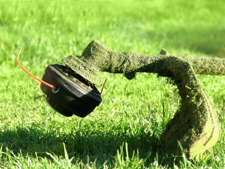 gas trimmer rests on grass after mowing, closeup photo of cutting head with vein and guard Фото со стока