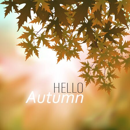 Vector illustration of Hello autumn banner template leaves