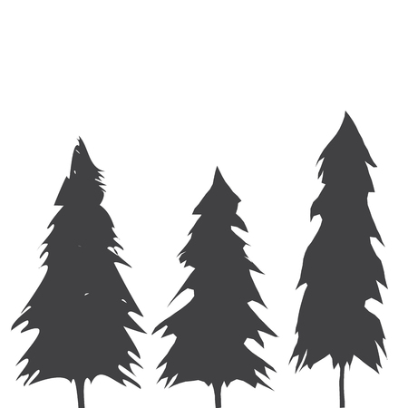 Pacific northwest old growth evergreen tree  イラスト・ベクター素材