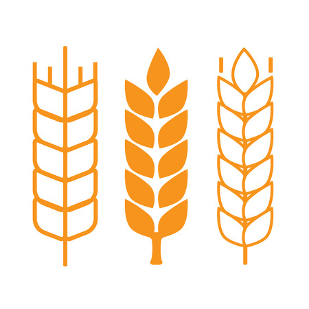 harvesting rice: Wheat ear symbols