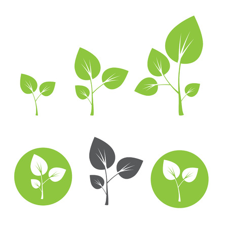 seedlings: Sprout icon vector illustration in flat style Illustration