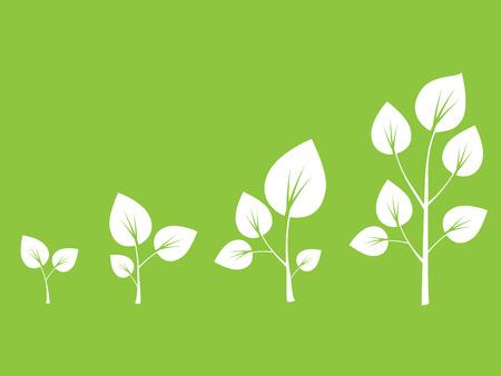 germinate: Apple tree growth cycle vector illustration Illustration