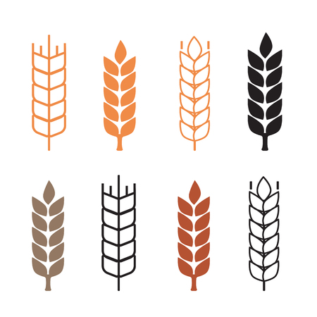 harvesting rice: Wheat ear symbols icon vector flat style