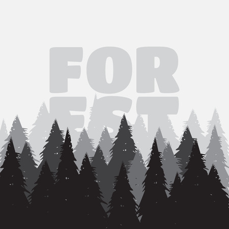 coniferous: Coniferous pine forest vector illustration. Wild coniferous forest background Illustration