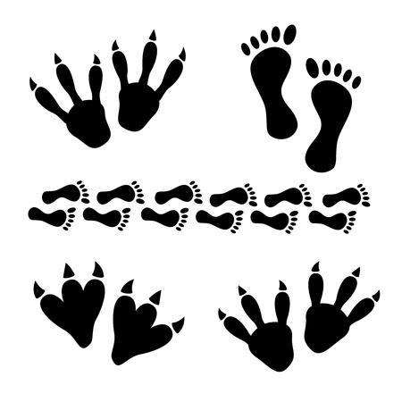 leopard gecko: Animal and reptile footprints vector. Set foot prints wild animals