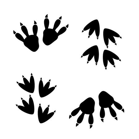 Footprint of dinosaur, vector illustration vector Stock Vector - 75096314