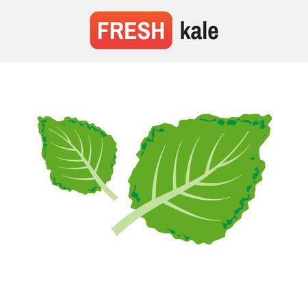 Kale icon.