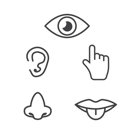 Icon human senses: vision, smell, hearing, touch, taste. Icons sense nose, ear, eye, hand vector Иллюстрация