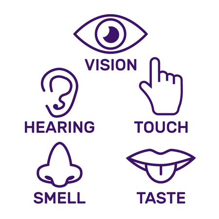 Icon human senses: vision, smell, hearing, touch, taste. Icons sense nose, ear, eye, hand vector Illustration