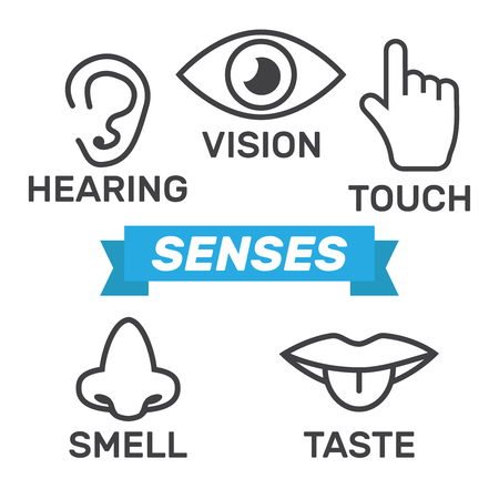 Icon human senses, vision, smell, hearing, touch, taste. Icons sense nose, ear, eye, hand vector.