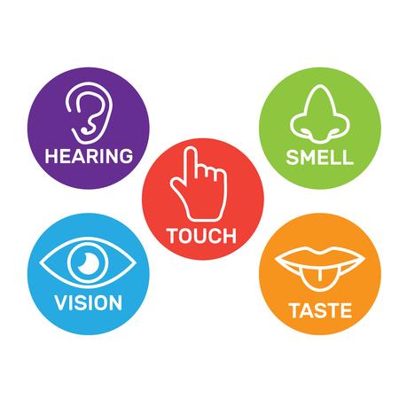 Kolor kolekcji ikon 5 zmysłów. Zestaw ikon pięciu zmysłów