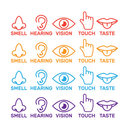 five senses icon. Sight, smell, hearing, touch, taste icons vector