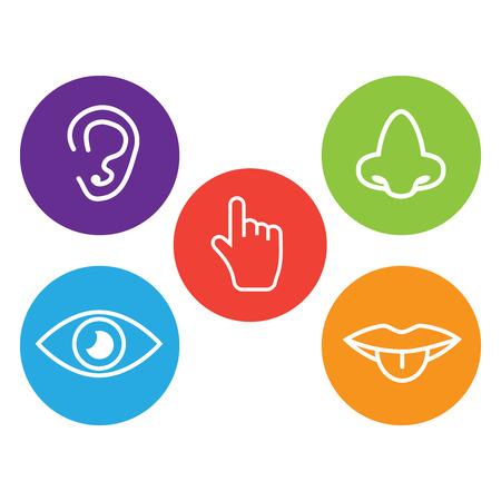 Fünf-Sinne-Symbol. Sätze von Symbolen, die die fünf Sinne darstellen