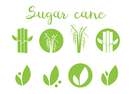 Sugar cane vector illustration. Sugar and sugar cane labels Vettoriali